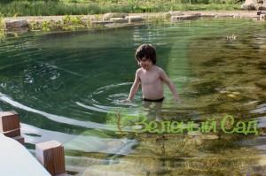 Искусственный пруд, плавательный